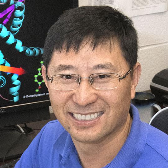 Chang-Jun Liu