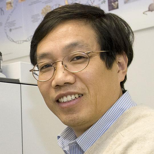 Changcheng Xu