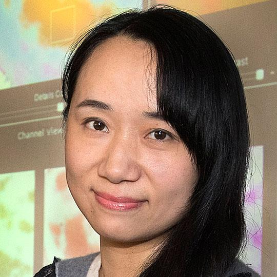 Wei (Celia) Xu