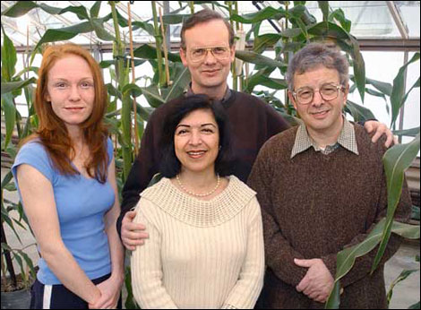 Image of the research team