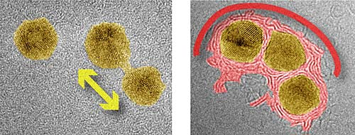 Image of gold nanoparticles