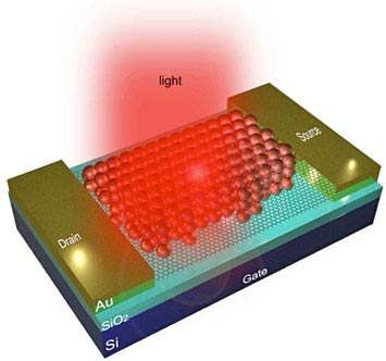 quantum dot-graphene nano-photonic device