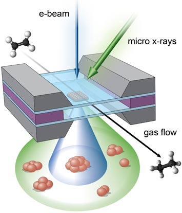 micro-reactor showing the complementary imaging