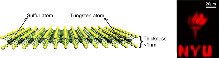single-atom-thick tungsten disulfide