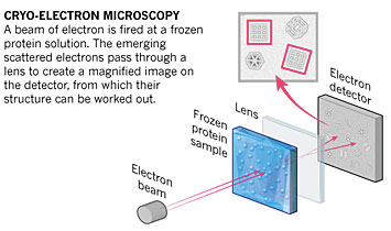Schematic of cryo-electron microscopy.