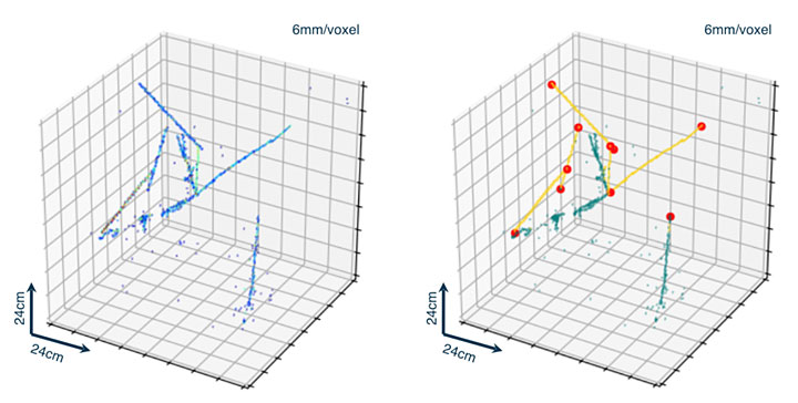 Left: input image showing charged particle trajectories in a detector. Right: annotated image using