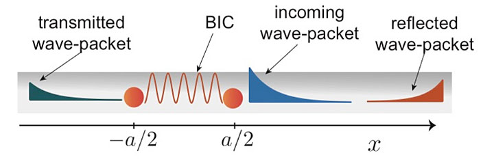 Exciting the BIC localized between two distant qubits coupled to a one-dimensional waveguide