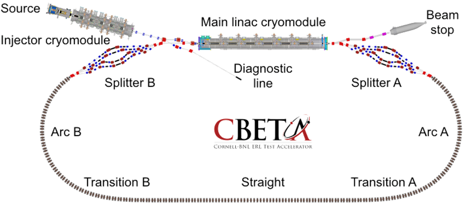 Schematic of the CBETA energy recovery linac installed at Cornell University. Electrons produced by a direct-current (DC) photo-emitter electron source are transported by a high-power superconducting radiofrequency (SRF) injector linac into the high-current main linac cryomodule, where SRF cavities accelerate them to high energy before sending them around the racetrack-shaped accelerator. Each curved arc is made of a series of fixed field, alternating gradient (FFA) permanent magnets. After passing through the second FFA arc, the electrons re-enter the main linac cryomodule, which decelerates them and returns their energy to the RF cavities so it can be used again.