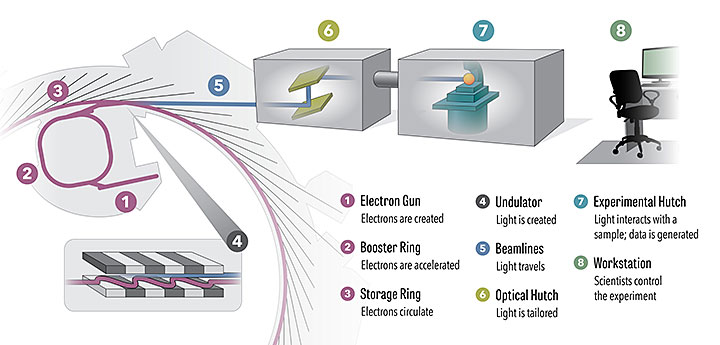 How the National Synchrotron Light Source II work