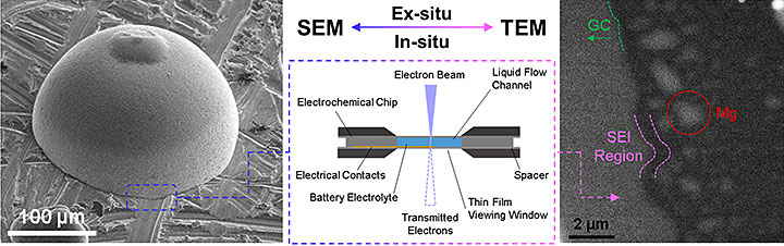 interaction between ex situ and in situ microscopy