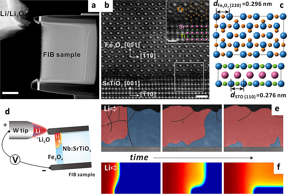 thin films on a niobium (Nb)-doped strontium titanate