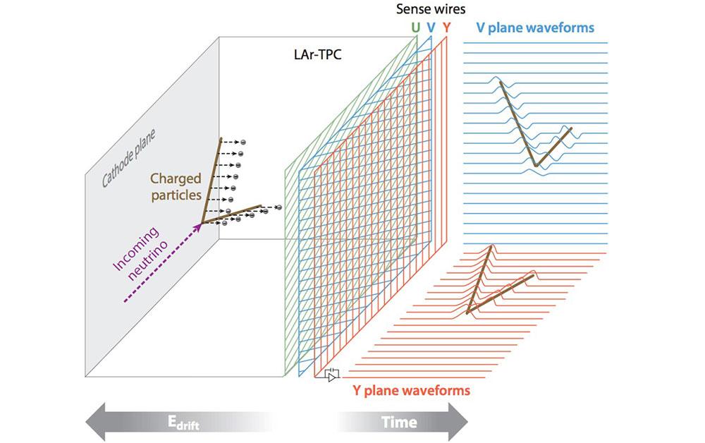 Schematic of neutrino interaction