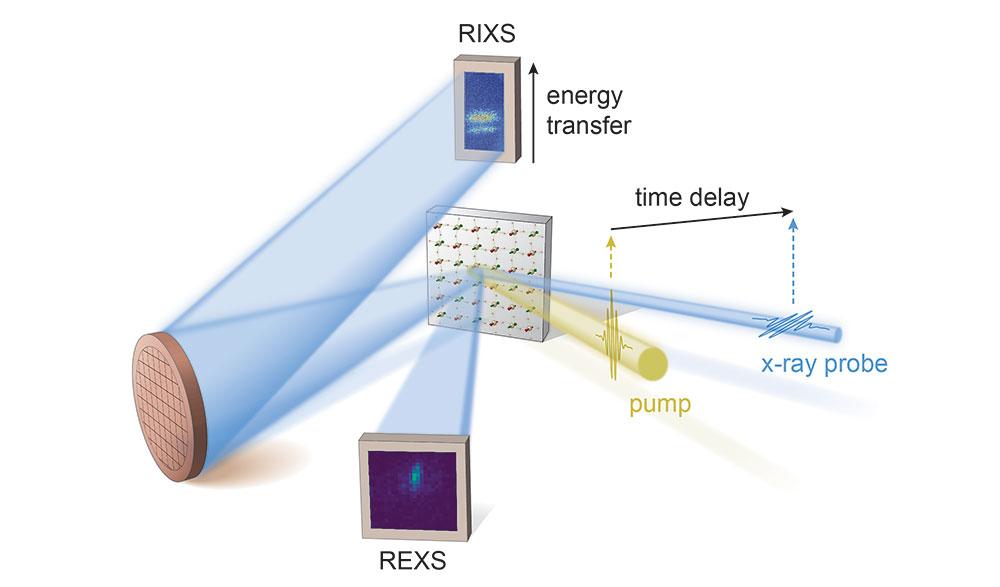 Schematic of the resonant inelastic x-ray scattering and resonant elastic x-ray scattering setups