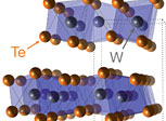 Crystal Structure of WTe2