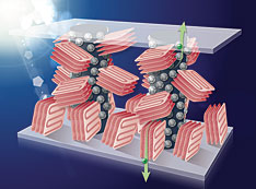Polymer-based plastic solar cells