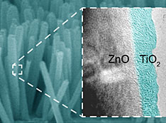 ZnO nanowire photocatalysts