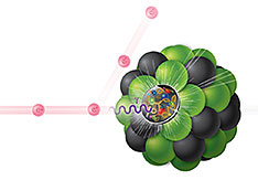 Electron-Ion Collision