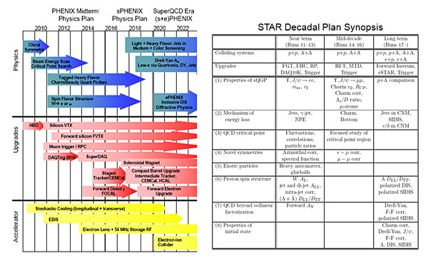 Summary of the PHENIX and STAR decadal plans.