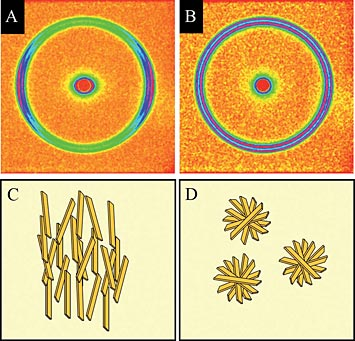 X-ray diffraction patterns of fat crystals