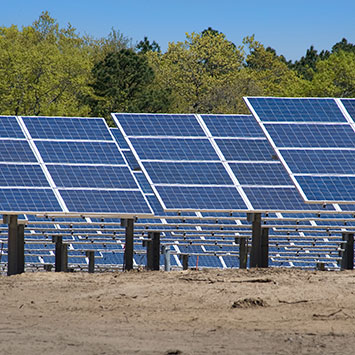 Photo of Long Island Solar Farm