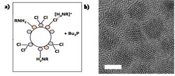 chloride-terminated CdSe quantum dot