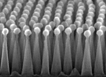 nanotextured square of silicon